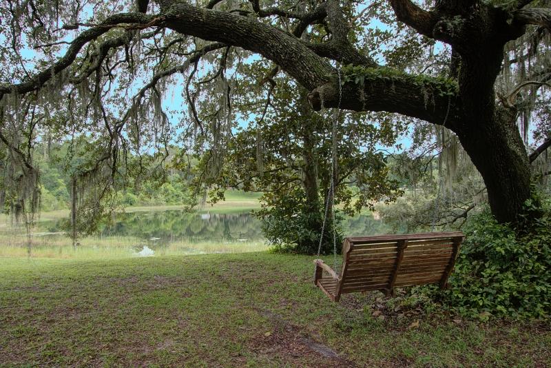 swing-old-oak-tree-lake-helen-florida